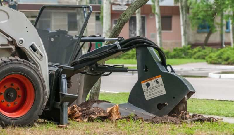 stump removal service Stanton California